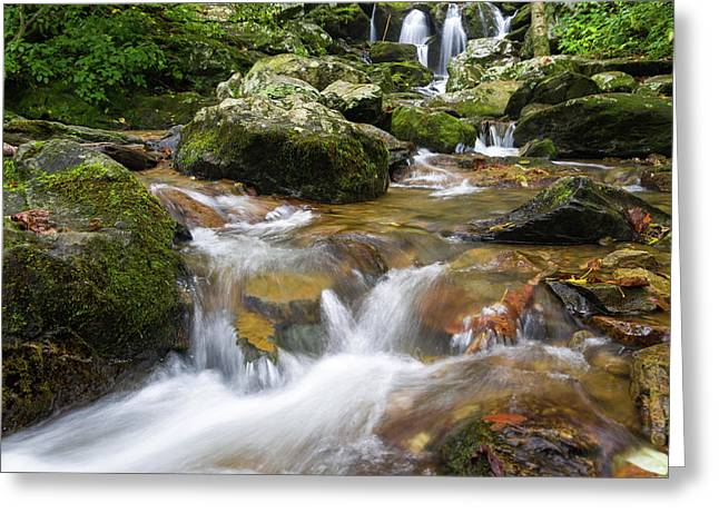 Hogcamp Branch Falls I Greeting Card