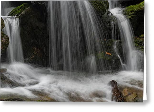 Hogcamp Branch Falls Vi 3x1 Greeting Card