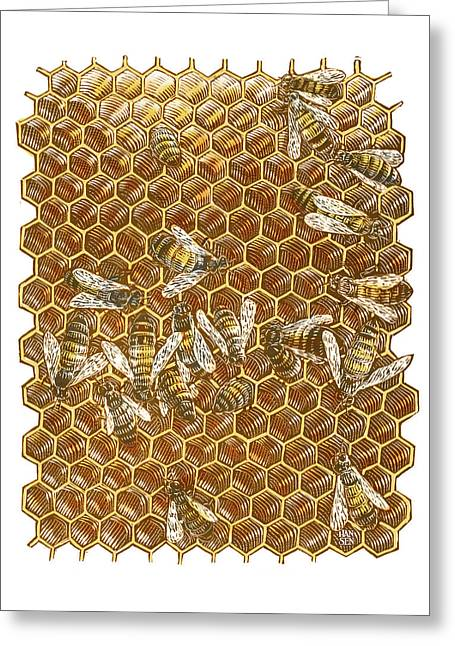 Honey Bees Greeting Card