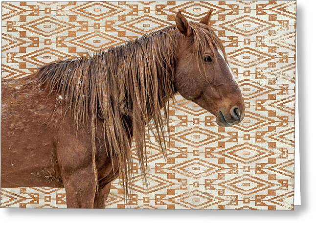 Horse Blanket Greeting Card