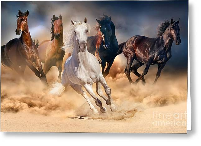 Horse Herd Run In Desert Sand Storm Greeting Card