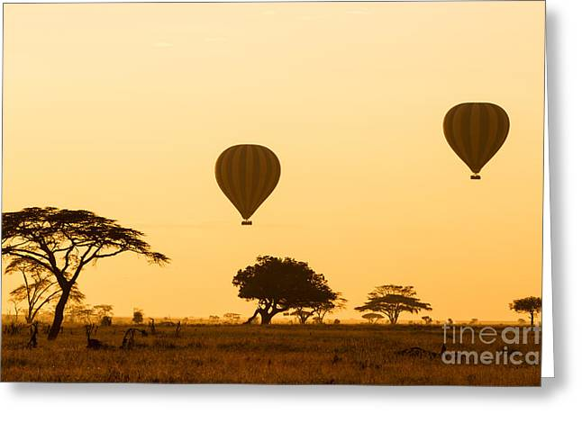 Hot Air Balloons Over The Serengeti At Greeting Card