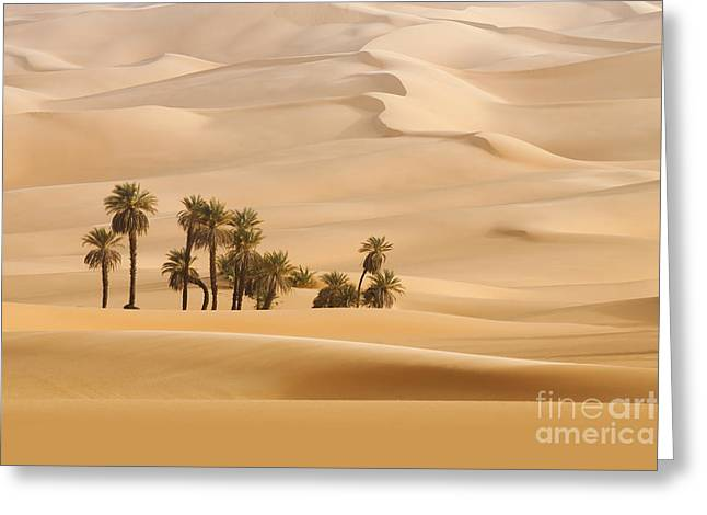 Huge Dunes Of The Desert. Fine Place Greeting Card