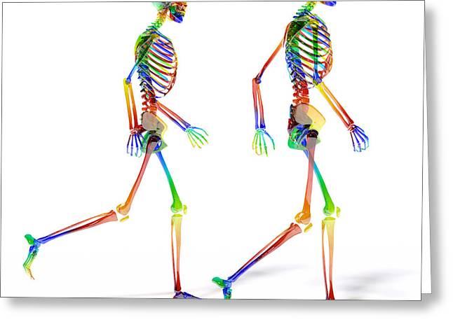 Human Skeleton Pair Greeting Card