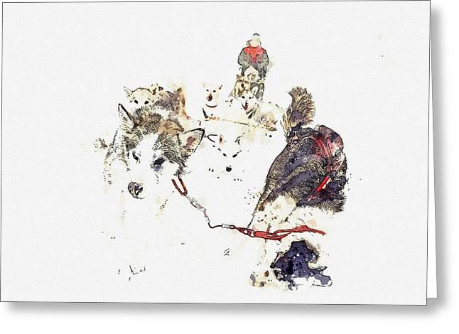 Huskies    Watercolor By Adam Asar Greeting Card