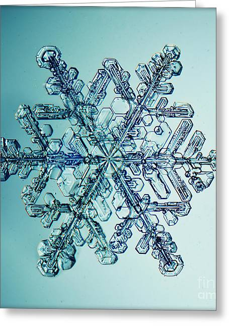 Ice Crystal Snowflake Macro Greeting Card