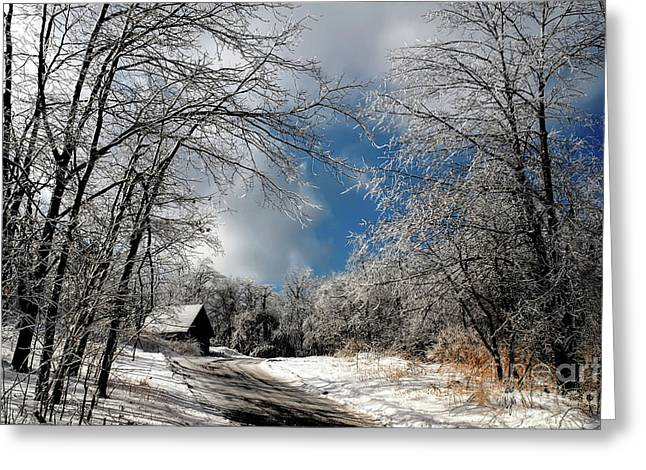 Ice Storm Aftermath Greeting Card