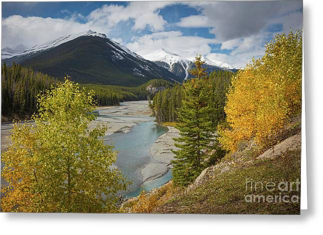 Icefields Parkway Autumn Greeting Card