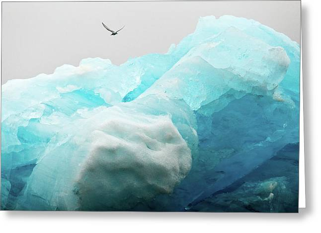 Greeting Card featuring the photograph Iceland Iceberg by Nicole Young