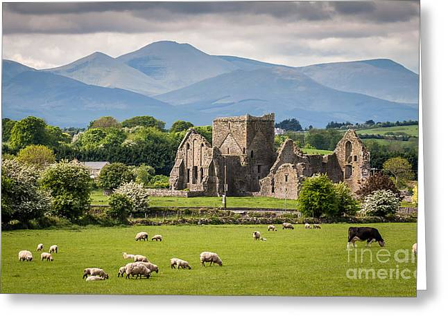 Idyllic Irish Landscape Greeting Card