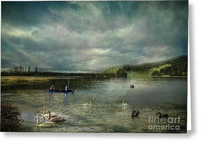Idyllic Swans Lake Greeting Card