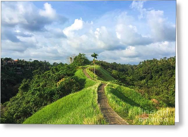 Idyllic Walking Path On Top Of Green Greeting Card