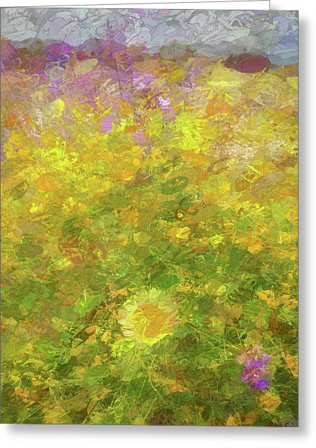Impressions Of A Desert Daisy Greeting Card