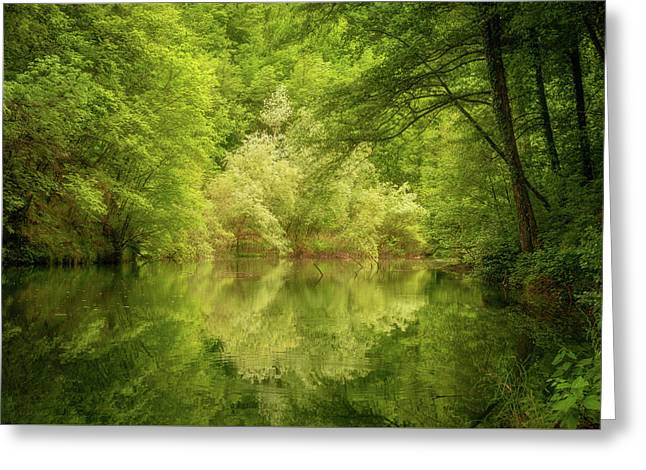 Greeting Card featuring the photograph In The Heart Of Nature by Mirko Chessari