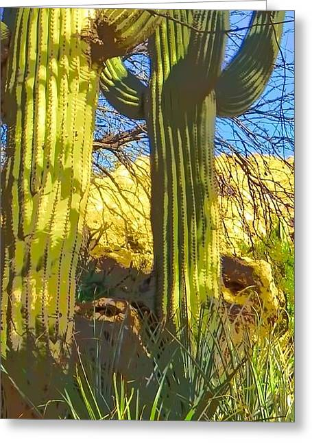 In The Shadow Of Saguaros Greeting Card