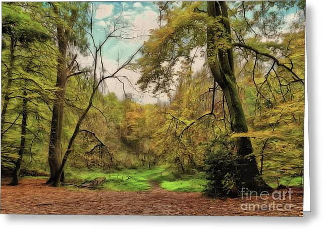 Greeting Card featuring the photograph In The Woods by Leigh Kemp
