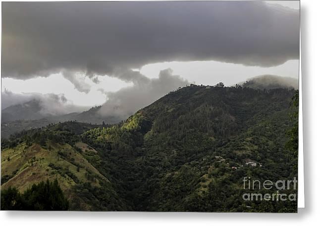 Jamaican Blue Mountains Greeting Card