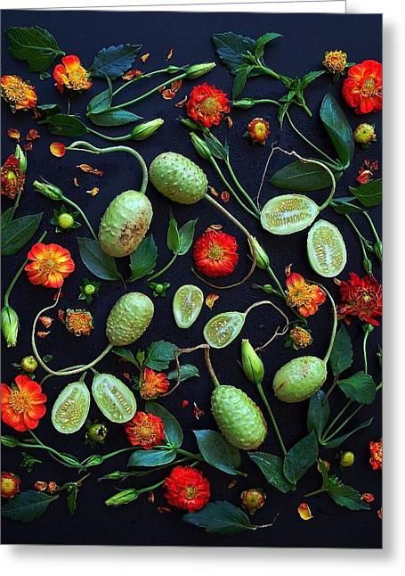 Jamaican Burr Cucumbers Greeting Card