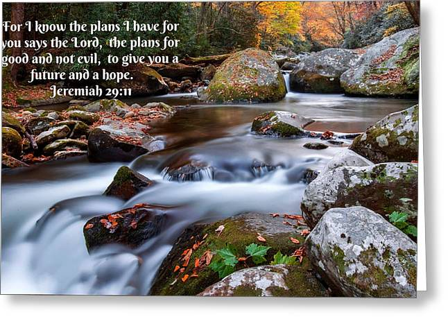 Jeremiah 29 And 11 Greeting Card