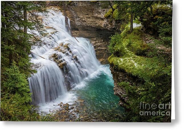 Johnston Creek Cascades Greeting Card