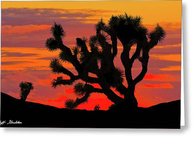 Joshua Tree At Sunset Greeting Card