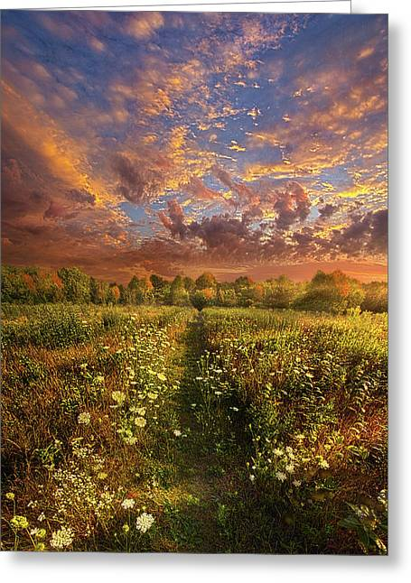 Greeting Card featuring the photograph Just Follow Your Feet by Phil Koch