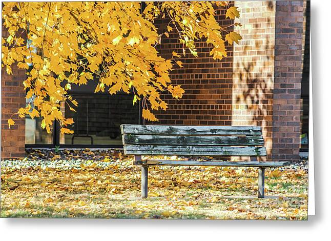 Just A Bench Greeting Card
