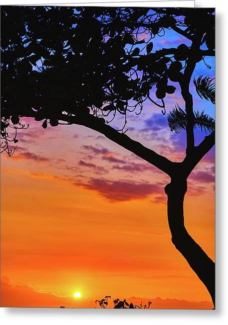 Just Another Kona Sunset Greeting Card