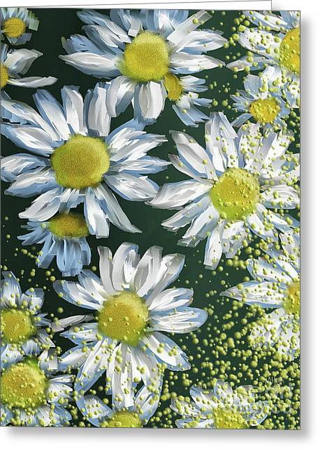 Just Crazy For Daisies Greeting Card
