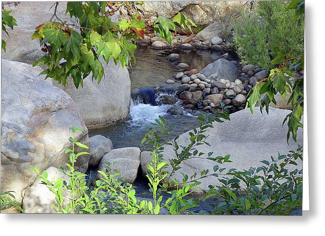 Kaweah River Greeting Card