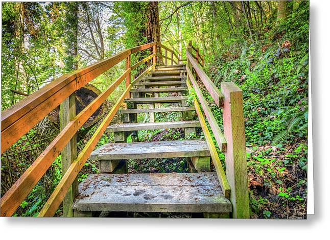 Kayak Point Trail Stairs Greeting Card