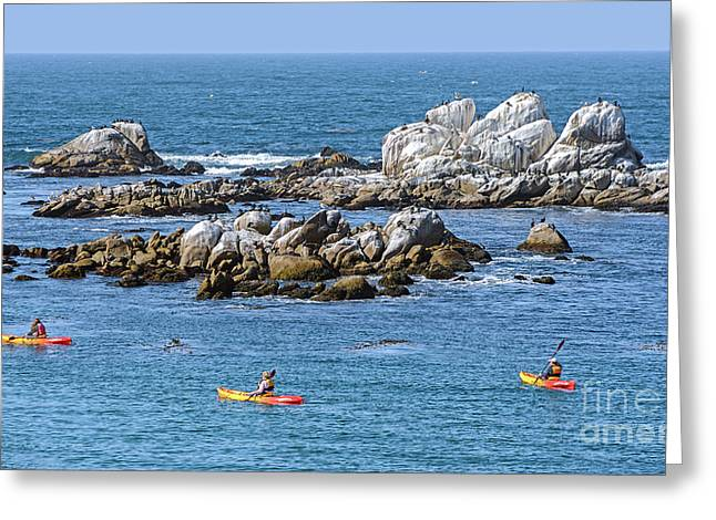 Kayakers Experience Bird Rock At Pacific Grove Greeting Card