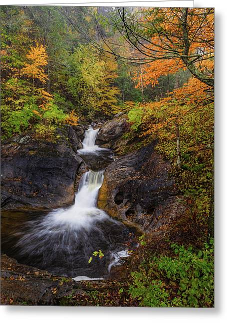 Greeting Card featuring the photograph Kent Falls Foliage 2 by Bill Wakeley