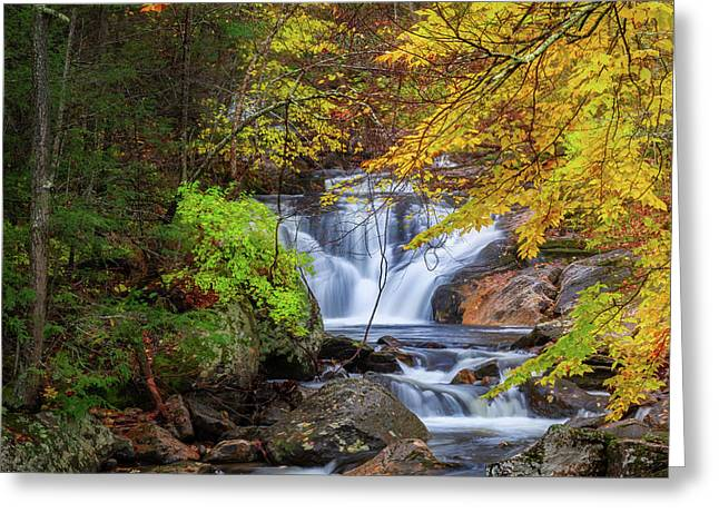 Greeting Card featuring the photograph Kent Falls Foliage Square by Bill Wakeley