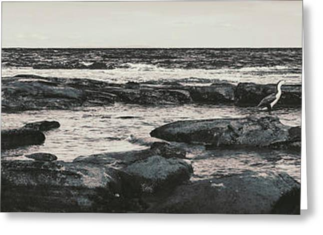 Kings Beach Rocky Panoramic Greeting Card