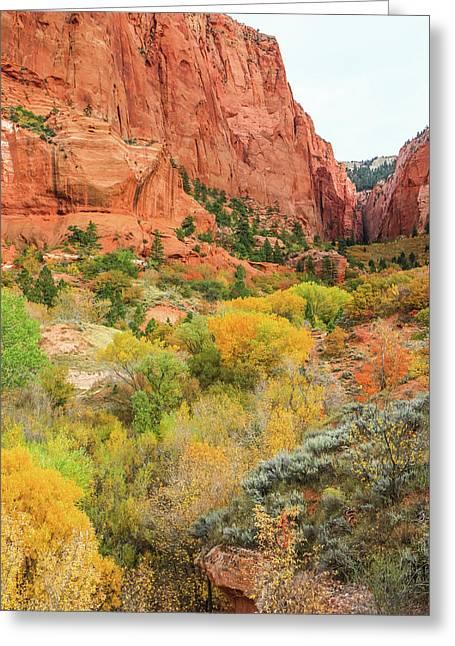 Kolob Canyon 2, Zion National Park Greeting Card