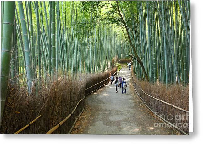 Kyoto, Japan - Green Bamboo Grove In Greeting Card