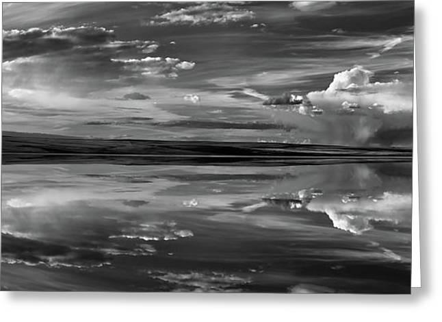 Lake Abert 11 Black And White Greeting Card by Leland D Howard
