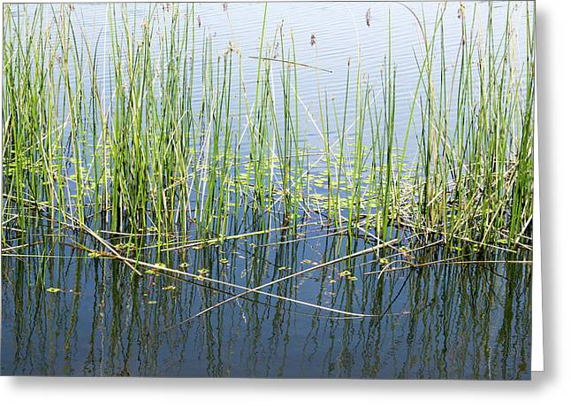 Lake Ilsanjo_533_18 Greeting Card