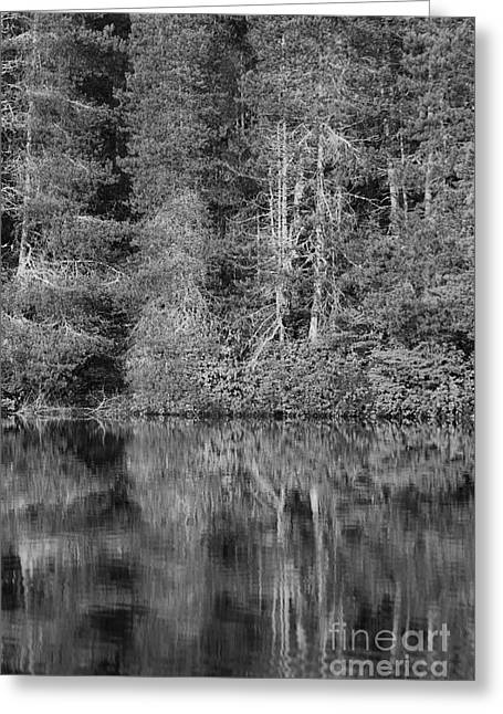 Greeting Card featuring the photograph Lakeside Bliss by Jeni Gray