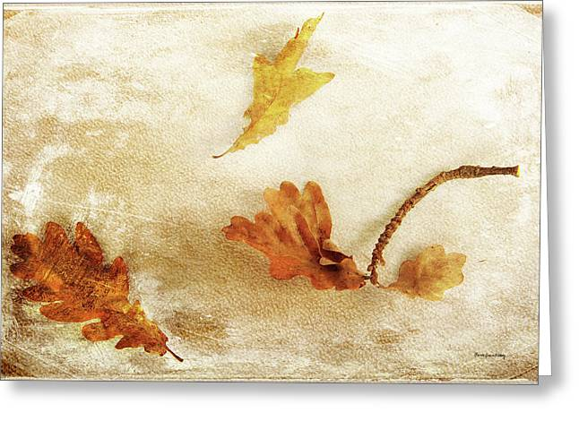 Greeting Card featuring the photograph Last Days Of Fall by Randi Grace Nilsberg