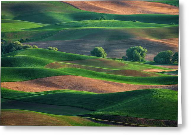 Late Afternoon In The Palouse Greeting Card