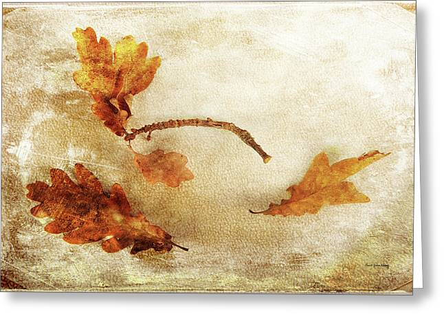 Greeting Card featuring the photograph Late Late Fall by Randi Grace Nilsberg