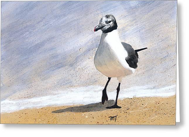 Laughing Gull Greeting Card