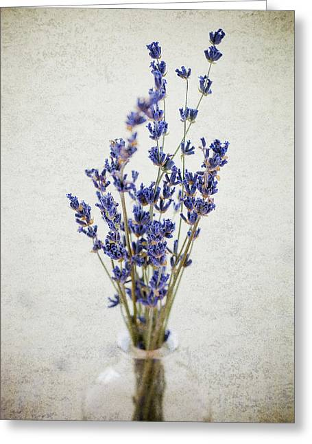 Greeting Card featuring the photograph Lavender by Nicole Young
