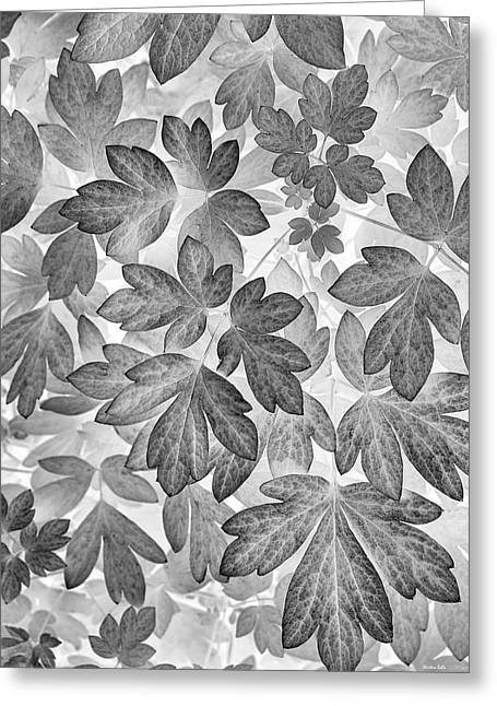 Greeting Card featuring the photograph Leaves Black And White Plant Pattern by Christina Rollo