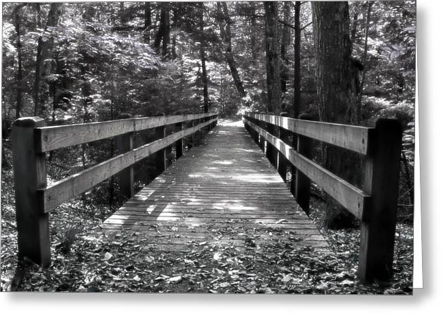 Greeting Card featuring the photograph Leelanau Trail by SimplyCMB