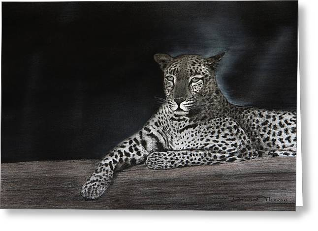Leopard Greeting Card