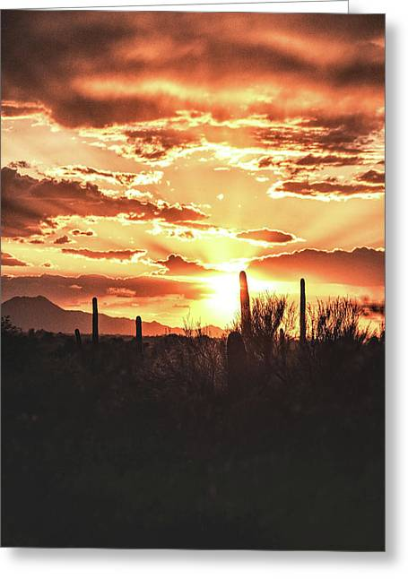 Light Of Arizona Greeting Card