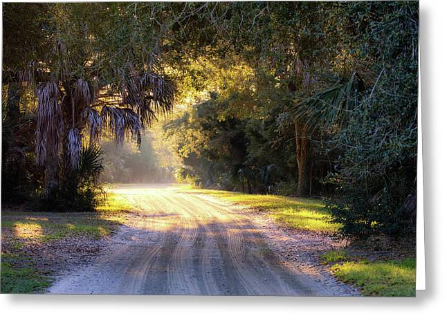 Light, Shadows And An Old Dirt Road Greeting Card